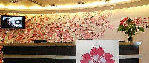 深圳樱花日语有多少个